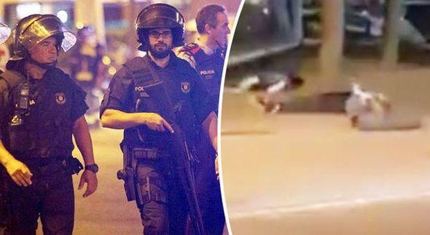 """Catalogna, un altro attentato. """"Auto sulla folla a Cambrils, 7 feriti. Uccisi cinque terroristi"""""""