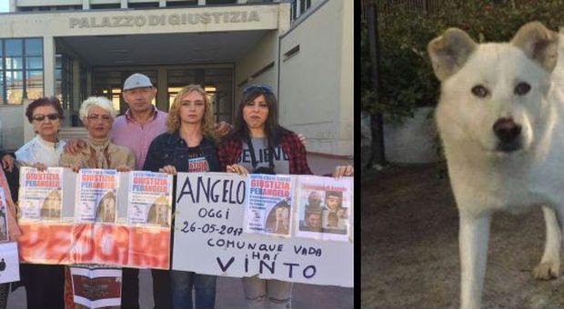 CANE ANGELO, ?TORTURATO E UCCISO DA 4 RAGAZZI: CONDANNATI AL MASSIMO DELLA PENA I SUOI AGUZZINI -FOTO