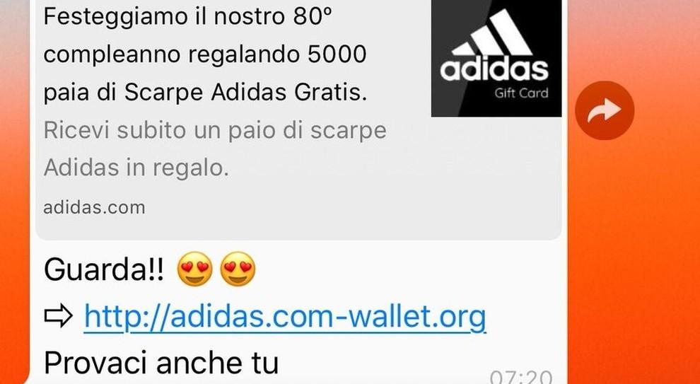 tempesta Facile da capire verticale  Adidas, truffa su Whatsapp: «Scarpe gratis», ma il messaggio è un pericolo.  Ecco come difendersi