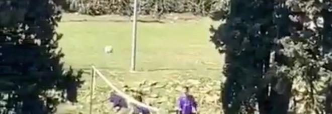 I figli di Renzi giocano a pallavolo con gli amici portati dalla scorta. L'ex premier: «Video falso, denuncio»