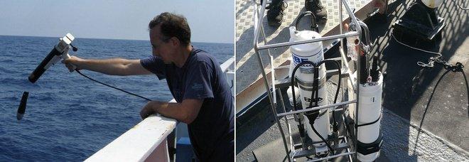 Oceani, allarme temperature: «Il record nel 2020, aumento costante negli ultimi anni e decenni»