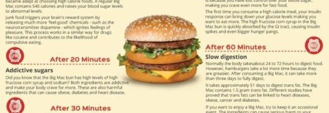 Big Mac, ecco i sorprendenti effetti sul corpo di chi lo mangia