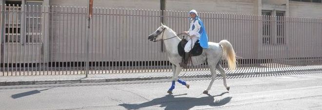 Matrimonio Principe Azzurro : Il principe azzurro esiste e cerca la sua bella a cavallo