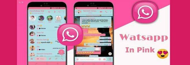 WhatsApp Pink, occhio alla (falsa) versione in rosa: ecco perché è bene non scaricarla