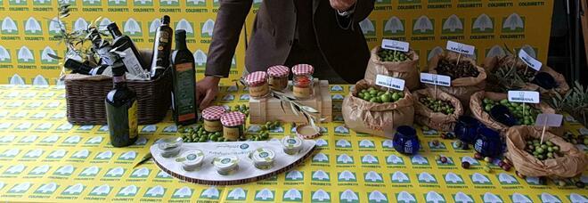Covid - Coldiretti, olio d'oliva di ottima qualità: raccolta in crescita nel Lazio dell'8%, ma produzione nazionale crolla del 30%