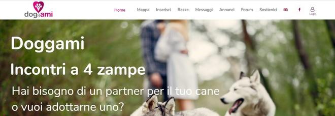 Doggami, molto più di un Tinder per cani: la community italiana per tutti i padroni