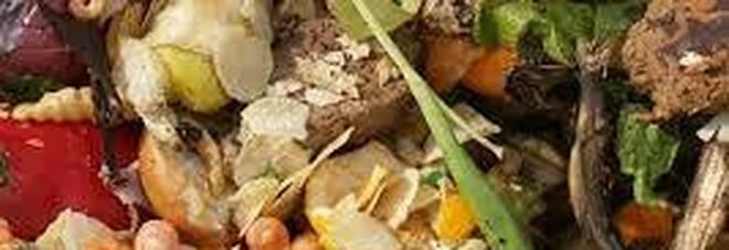 """A Roma arriva """"EcceDiamo"""", il Festival della lotta allo spreco alimentare"""