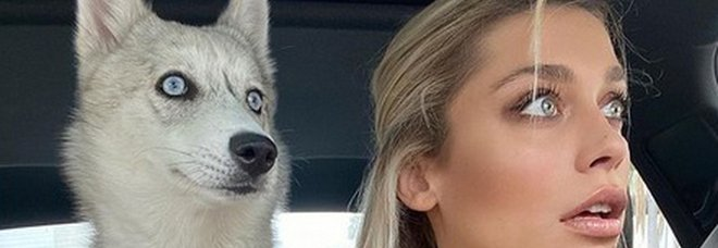 L'ex velina Ludovica Frasca, stesso sguardo del suo Husky. Video tutto da guardare