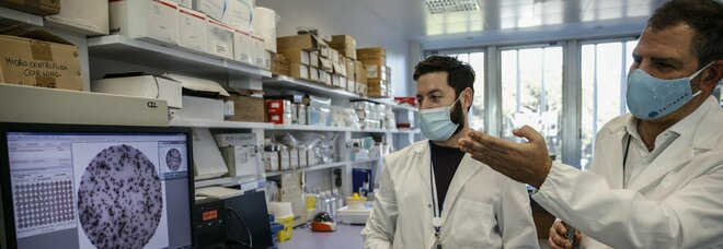 Reithera, da Invitalia 81 milioni per il vaccino italiano. Ora pronti per la fase 2 per 100 milioni di dosi l'anno