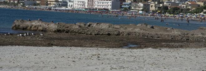 """Spiagge pulite, storia dell'imprenditore che """"lava"""" la sabbia del mare da alghe e spazzatura"""