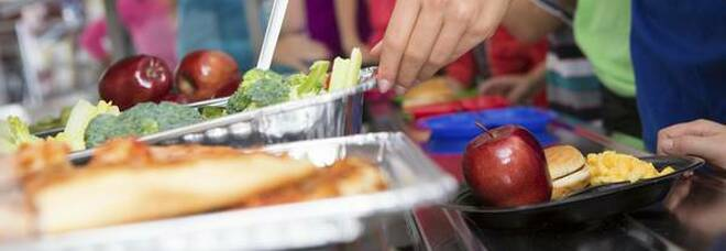 Bando mense scolastiche, la Lega: «Nel piatto vanno pochi prodotti a km zero»