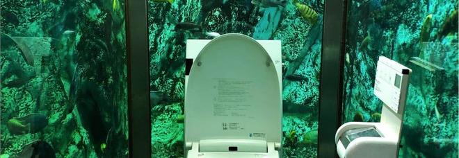La toilette? Dentro un acquario. E il locale giapponese fa il pieno di turisti