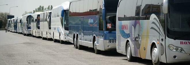 """""""Sistema trasporti"""", l'allarme: «Il settore del trasporto privato delle persone rischia di scomparire»"""