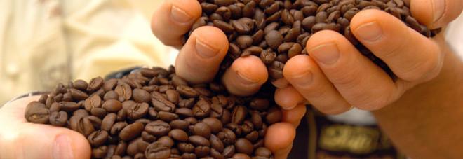 """Usa, ritirato dal mercato il caffé al """"Viagra"""": """"È pericoloso per la salute"""""""