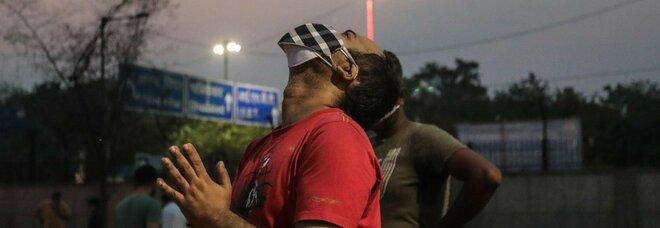 In India si cospargono di sterco e urina di mucca per combattere il Covid. Gli esperti: «Solo credenze»