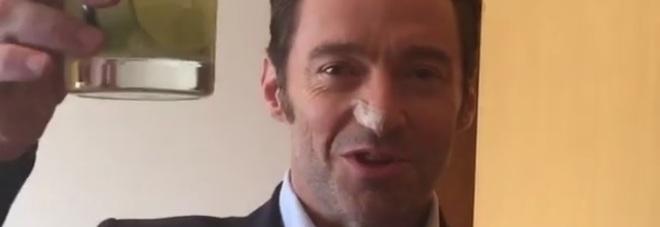 Hugh Jackman sconfigge il cancro per la sesta volta e brinda alla salute  -Video a0be7e541305