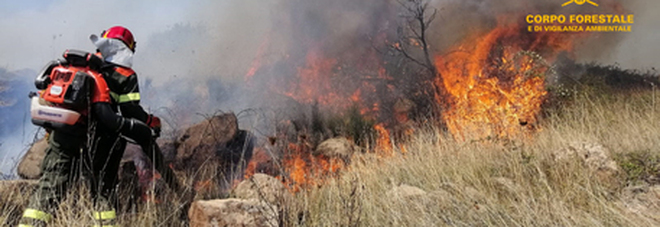 Sardegna, arrestati due volontari antincendio: appiccavano roghi