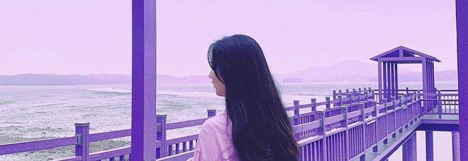 Isola remota della Corea del Sud diventa meta dei turisti: Banwol-ri è stata tutta dipinta di viola