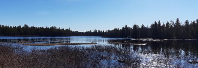 Le meraviglie della Lapponia Finlandese nell'area naturalistica di Ruka Kuusamo