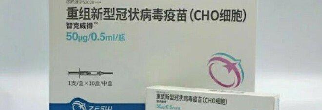 Svolta dalla Cina, arriva il vaccino Zhifei: «Con tre dosi blocca tutte le varianti, Delta compresa»