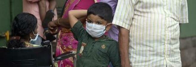 Allarme nuovo virus in India: il Nipah ha già ucciso un ragazzo di 12 anni