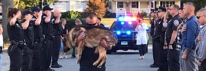 L'ultimo straziante saluto ad Hunter, il cane poliziotto malato di cancro