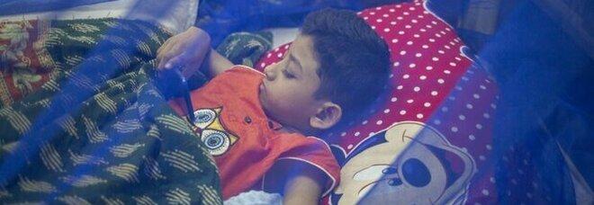 Dengue, in India 70 morti in 7 giorni e scuole chiuse: che cos'è la malattia che spaventa il Paese