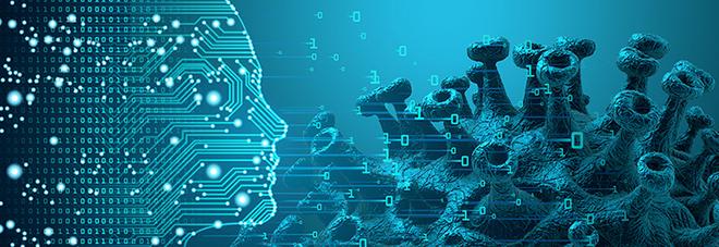 Intelligenza artificiale contro il Coronavirus: «Una tecnica innovativa, basata sui modelli matematici»