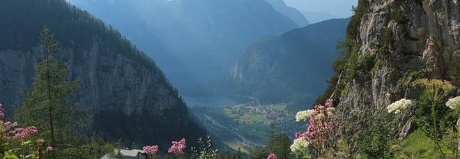 Austria, una proposta inedita per chi ama la natura e le... vacanze