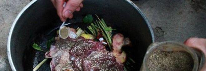Uccide e cucina al barbecue il gatto del vicino non for Cosa mangia il gatto
