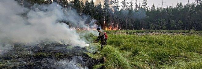 Il fumo degli incendi in Siberia raggiunge il Polo Nord per la prima volta: l'allarme