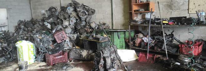 Officina abusiva e rifiuti di ogni genere, denunciato il proprietario