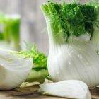 Dieta, i finocchi aiutano a perdere peso ma attenti a mangiarne troppi
