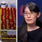 La virologa cinese disse: virus creato in laboratorio. Gli scienziati: «Ha fatto copia e incolla da un blog»
