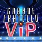 Stasera in tv, GF VIP e il caso di Covid: cosa succederà al programma?