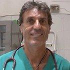 Il veterinario Coccìa: «Ladri o padroni drogati, i casi non sono infrequenti»