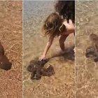 Sardegna, il polpo si spinge fino a riva per farsi accarezzare dai bimbi