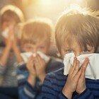 Il polline aumenta il rischio di contrarre il virus