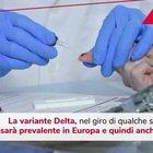 """Speranza: """"Variante Delta sarà prevalente in Europa e in Italia"""""""