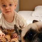 Chiara Ferragni, Leone e il gesto con la cagnolina Matilda: «Sensibile»