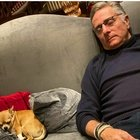 Paolo Bonolis dorme la notte di Capodanno, la moglie Sonia Bruganelli posta la foto su Instagram: «Finale coi botti!»