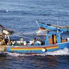 """Pensioni, non scatta l'aumento d'età per pescatori e braccianti. """"Esentati altri 3.800 lavoratori"""""""