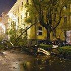 Maltempo a Salerno, cadono alberi tra le luci d'artista