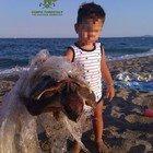 Bimbo salva una tartaruga ferita e intrappolata nella plastica: la foto del piccolo Gabriele emoziona il web