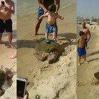 Tartaruga marina maltrattata dai turisti (GreenArea)