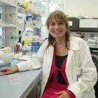 L'immunologa Viola: «Contagio è al chiuso, allentiamo restrizioni all'aperto». Dai ristoranti al fitness