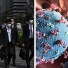 Variante giapponese resiste al vaccino? Burioni: «Pfizer sembra efficace»