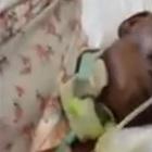 Paziente intubata ricoperta di formiche: il video della vergogna in ospedale