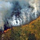 Amazzonia, incendi fuori controllo: «Sta bruciando dell'84% in più dell'anno scorso»