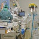 Covid, lo studio: «In terapie intensive mortalità pazienti doppia rispetto a influenza»